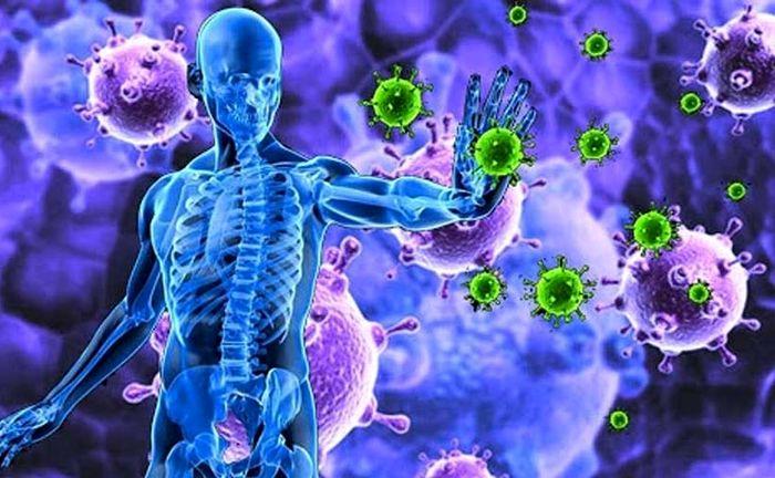 پژوهش های سیر سیاه و سیستم ایمنی