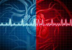 پژوهشهای سیر سیاه و قلب
