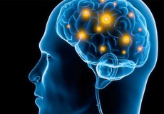 اثرات سیر سیاه بر حافظه مکانی مغز